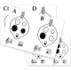 Music Code-Cracker Ocarina Flashcards